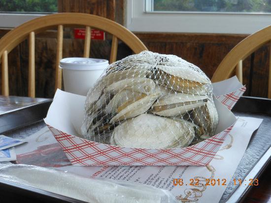Little Jacks's Seafood Restaurant and Lobster Pool: steamers