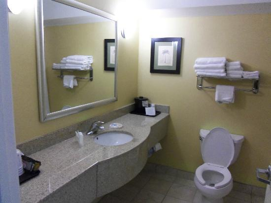 Sleep Inn & Suites University/Shands: View of bathroom