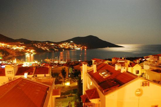 Moonlight Terrace Restaurant : view from Moonlight Terrace