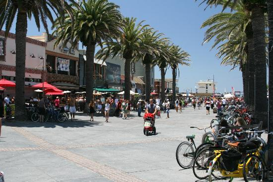 Surf City Hostel Hermosa Beach Bars Beneath