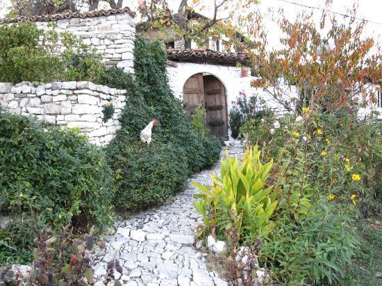 Berat Backpackers: Inside Berat fortress area.