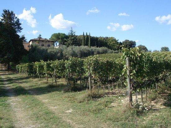 Az. Agr Castel di Pugna: villa