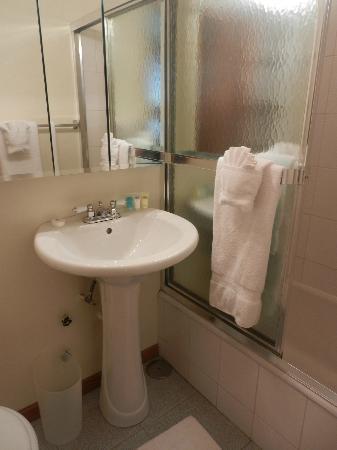 Dewitt Hotel & Suites: Bathroom