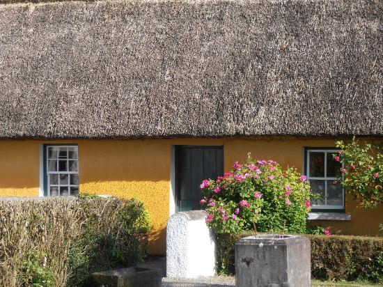 Adare Irish Cottages: Beautiful!
