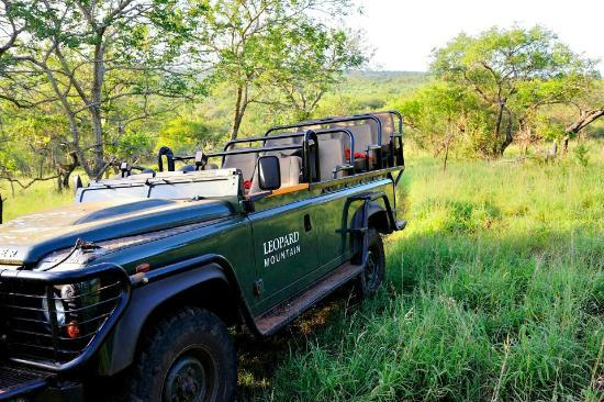 Leopard Mountain Game Lodge: Game vehicle