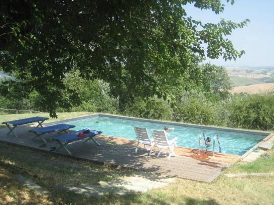 Fattoria Barbialla Nuova: pool view during the day