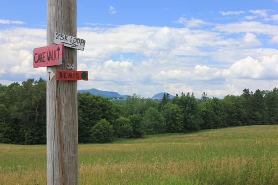 Kingdom Trails: South End of the Bemis Trail