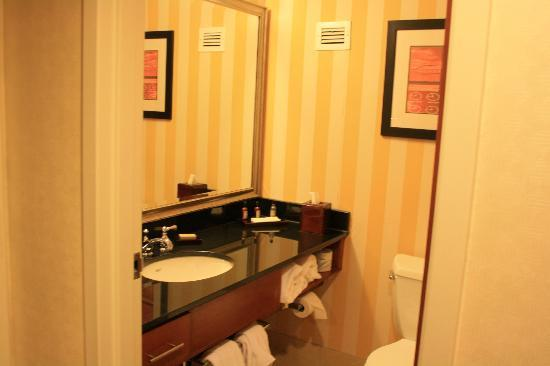 Detroit Metro Airport Marriott: Bathroom (with the noisy fan on wall )