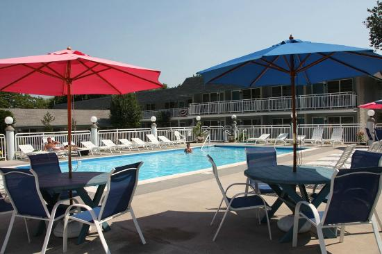 Cape Harbor Motor Inn: Umbrellas and chairs surround our swimming pool