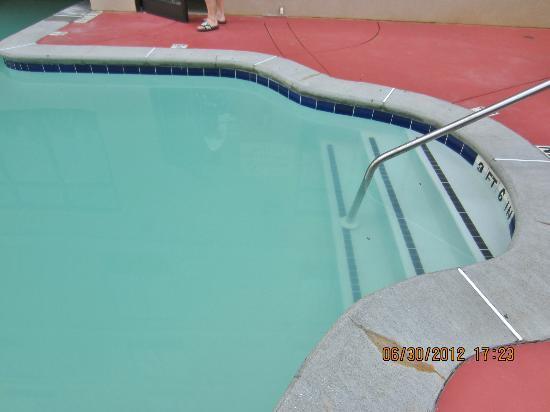 Hilton Garden Inn Cartersville: murky water and bees killed by guest