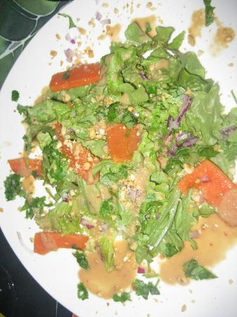 Rio Magnolia Nature Lodge: Papaya Salad with Peanut Dressing