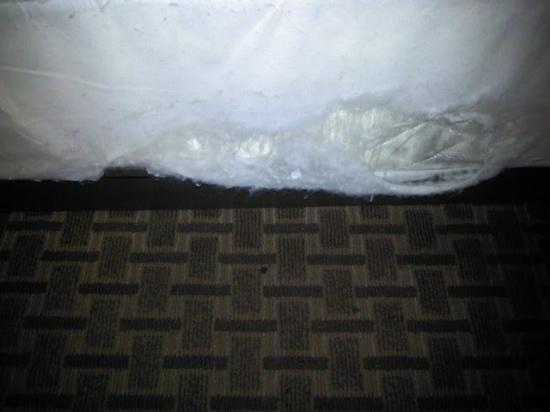 Days Inn Long Island/Copiague: rips in mattress