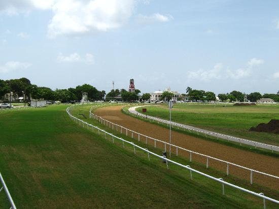 Barbados Garrison: View from the top-The Garrison