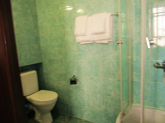 Club Hotel Agni : small bathroom