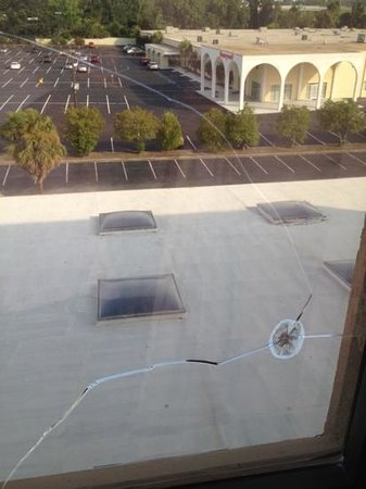 Charleston Airport Hotel: crack in window