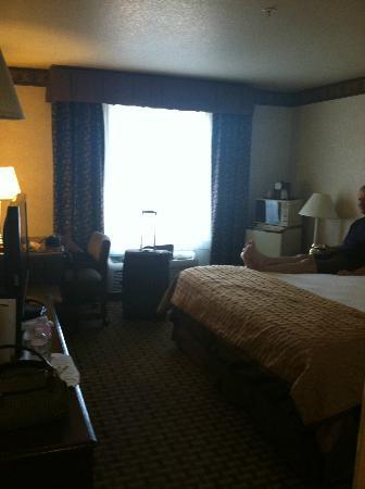 BEST WESTERN PLUS Rama Inn & Suites: Room
