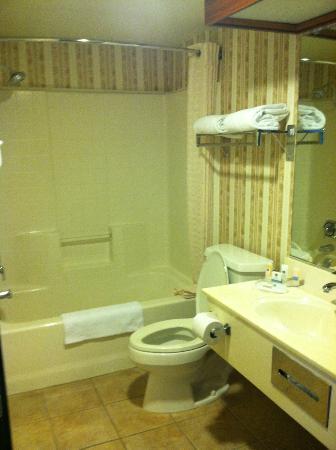 BEST WESTERN PLUS Rama Inn & Suites: Bathroom