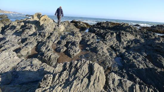 Blue Dolphin Inn : It's not called Moonstone Beach for nothing. I love a good rocky hike.