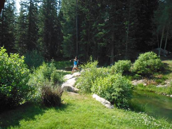 Iron Horse Resort: brook runs by gazebo - great landscaping