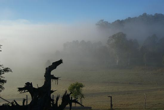 Yabbaloumba Retreat: Morning mist over the grounds