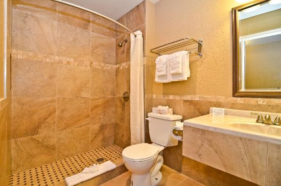 Quality Inn and Suites Near the Border: Bathroom