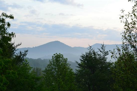 Pioneer Cabins & Guest Farm: The view from our porch.