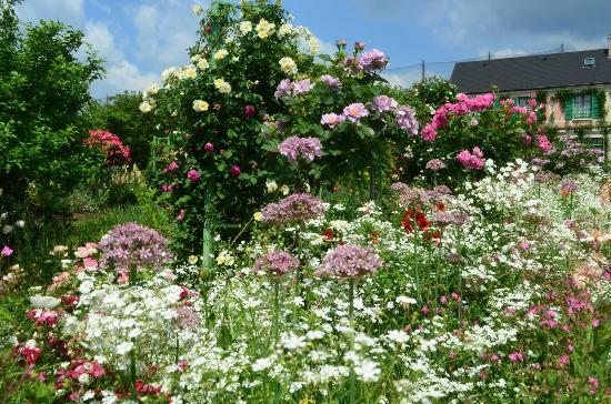 Hamanako Garden Park : 5月の花の美術館