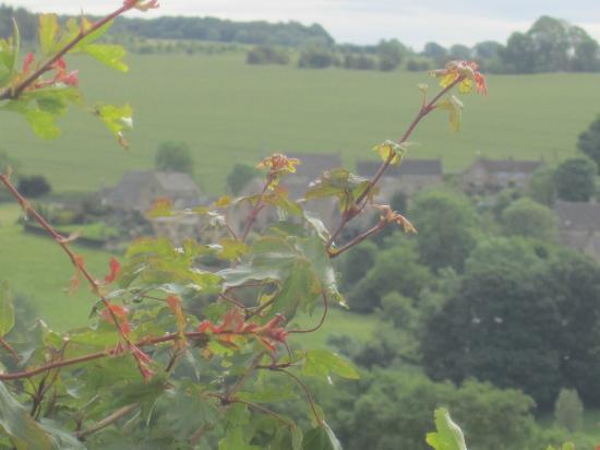 Tour the Cotswolds: View of Snowshill from the drive up to Tim's farm