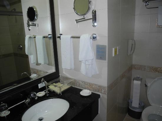 Royal Prince Hotel: bathroom is clean