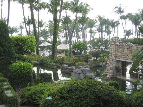Hyatt Regency Aruba Resort and Casino: Kelly Habbas' view from room at Hyatt Aruba