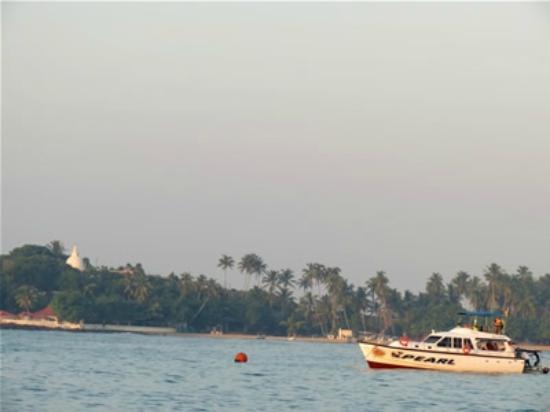 อูนาวาทูนา, ศรีลังกา: Unawatuna safari boat
