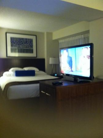 Hyatt Regency Lisle near Naperville: standard king room no mini fridge