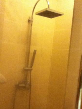 Hotel Kimberly: nice shower head