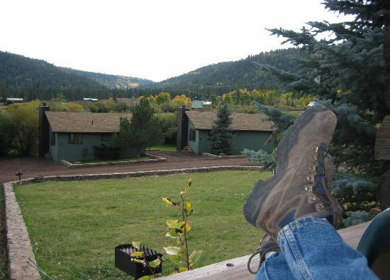 Antler Ridge Resort Cabins: view from our porch of the trees
