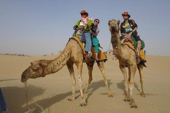 Desert Thar Safari