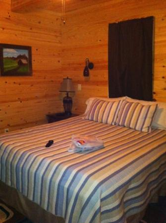 Knotty & Nice B&B: The bedroom of the Rustic Cabin