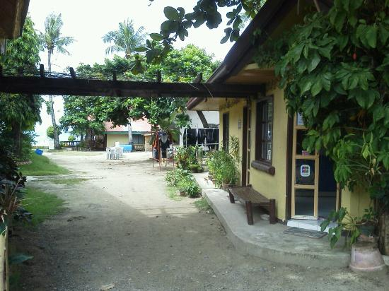 Anemone Resort and Tours, Cebu: (1)右がフロント事務所。正面は海。
