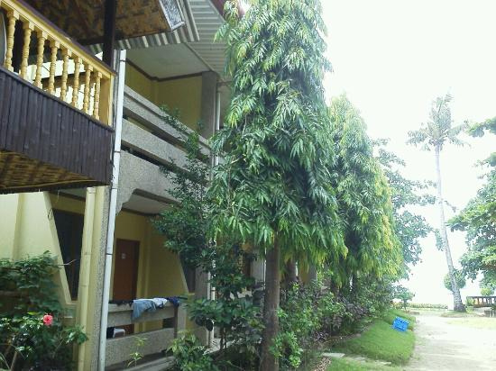 Anemone Resort and Tours, Cebu: (3)我々が泊っている部屋。