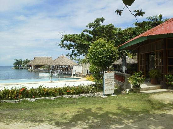Anemone Resort and Tours, Cebu: (4)敷地内の海寄りからプールと右にスナック、奥は隣りのホテル。