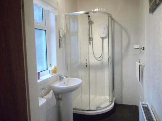 The Gaydon Hotel: shower room