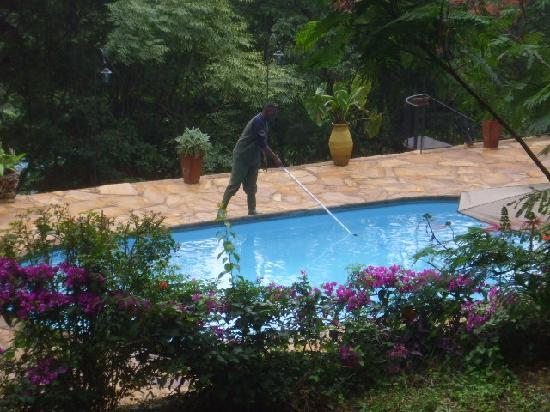 Karama Lodge & Spa: the man cleaning the pool in the morning