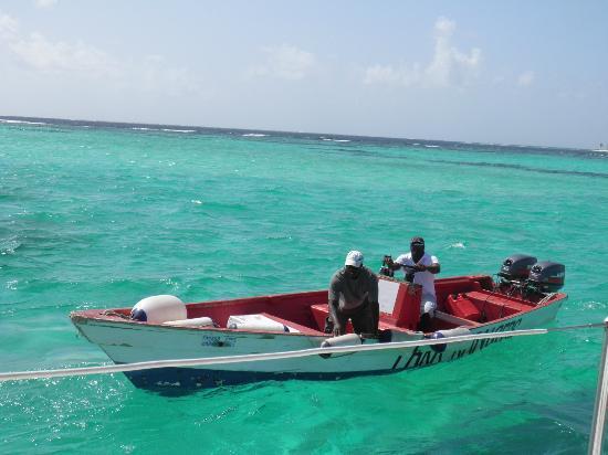 Tobago Cays Marine Park sud Grenadine Islands guarda parco