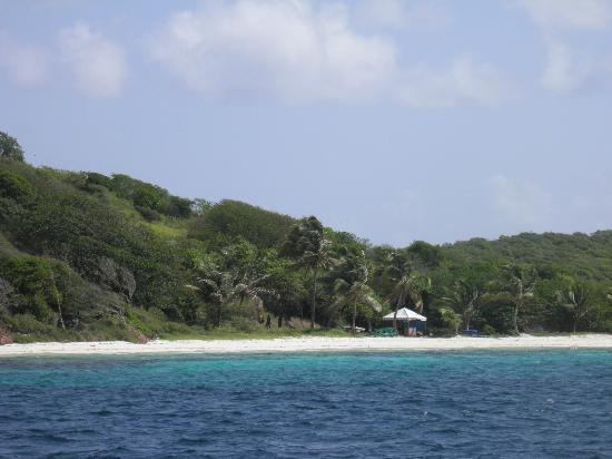 Tobago Cays Marine Park sud Grenadine Islands