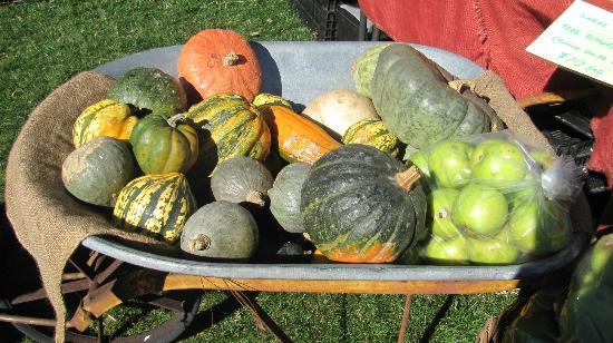 FoodPath Culinary Tours: Focusing on local and seasonal food