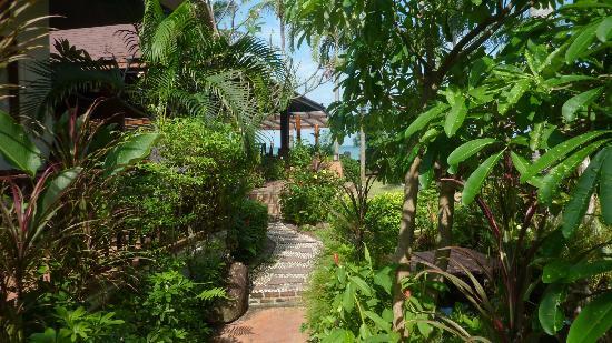 Kanok Buri Resort: der Weg zwischen den Bungalows zum Strand