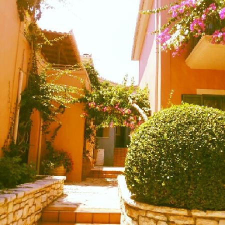 9 Muses Hotel Skala Beach: Lovely flowers in and around the hotel 