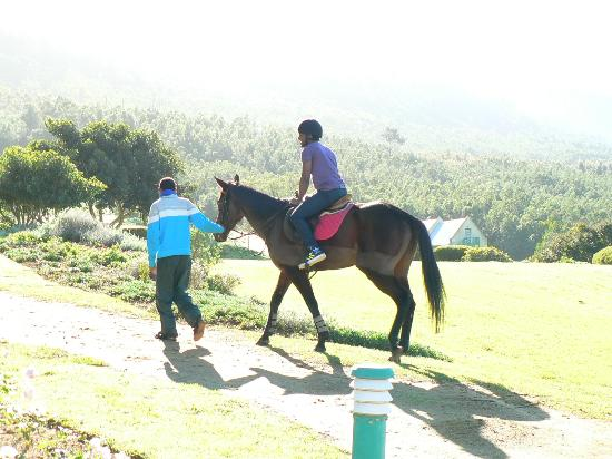 Caledon Hotel, Spa, Casino: Horse riding