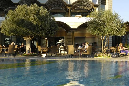 Constantinou Bros Athena Royal Beach Hotel: Athena Royal Beach Hotel - Olive Tree Restaurant