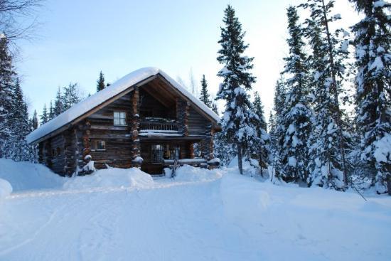 Yllashilla Cottage: Yllashilla