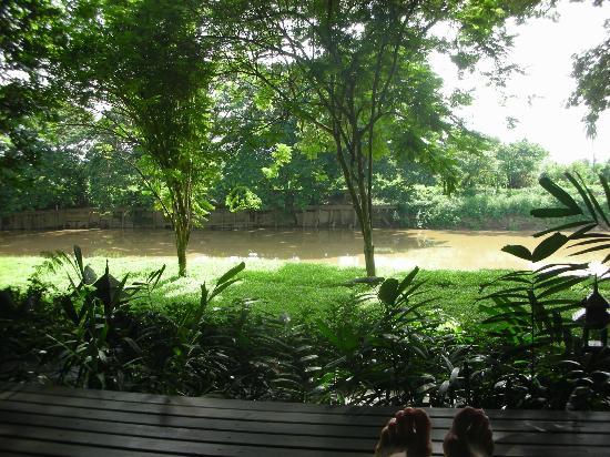 Baan Nam Ping Riverside Village : Baannamping Riverside Village View from our room